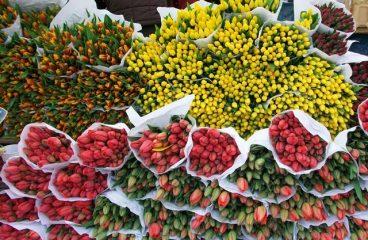 Get the Malaysia's Favourite Kedai Bunga Segar