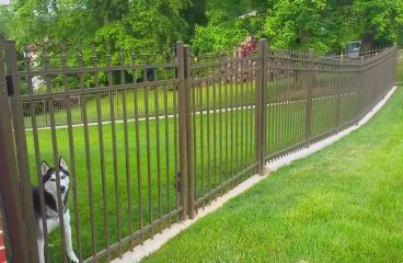 Points to be considered while choosing the dog fence
