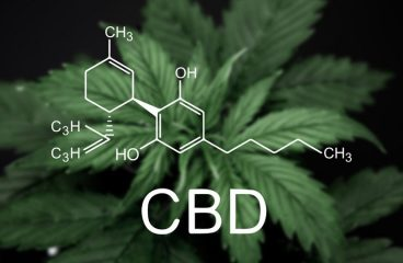 Side effects of CBD usage you should know